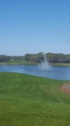 Florida garden walk…