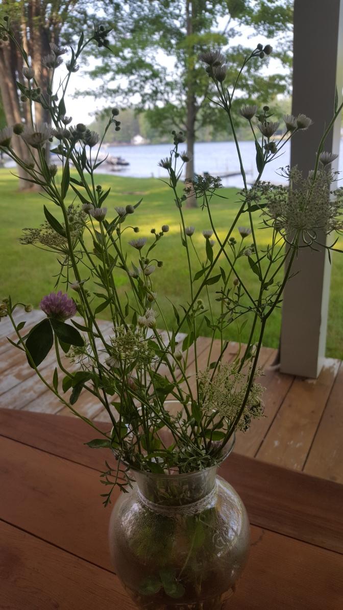 august wild flowers 1