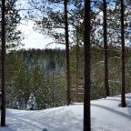 Winter's Beauty…